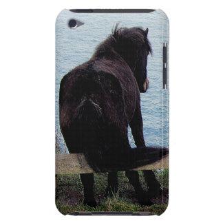 Potro del sur de Dartmoor de la costa de Devon que Barely There iPod Cárcasas