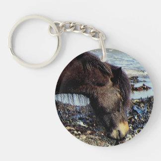 Potro del sur de Dartmoor de la playa de Devon que Llavero Redondo Acrílico A Una Cara