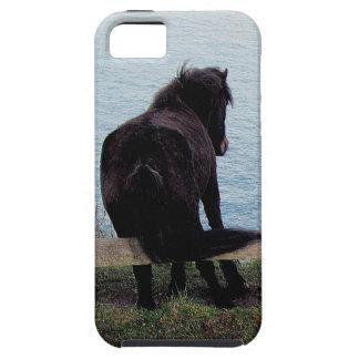 Potro del sur de Dartmor de la costa de Devon que  iPhone 5 Case-Mate Carcasa
