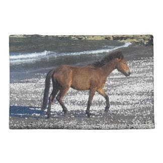 Potro del sur de Devon Dartmoor que trota en la pl