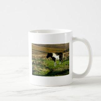Potro en Dartmoor Taza De Café