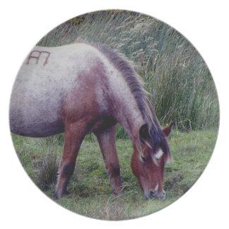 Potro Grazeing Autunm temprano de Dartmoor Platos Para Fiestas