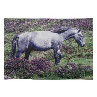 Potro gris de Dartmoor que vaga por en el brezo Manteles Individuales