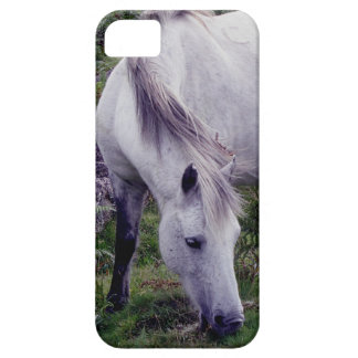 Potro gris Grazeing Autunm de Dartmoor Funda Para iPhone 5 Barely There