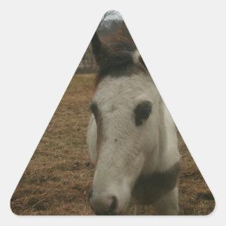 Potro lindo (caballo del bebé) pegatina triangular