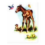 Potro lindo del bebé del potro del caballo tarjetas postales