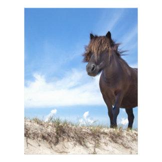 Potro negro en la arena con el cielo azul plantilla de membrete