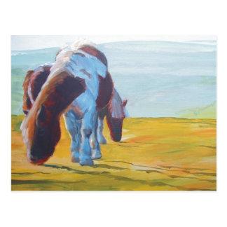 Potros de Dartmoor y pintura de paisaje brumosa Tarjetas Postales