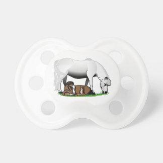 Potros miniatura chupetes de bebé