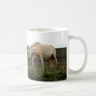 Potros salvajes de Dartmoor Taza