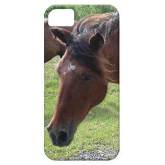Potros salvajes en caso del iPhone 5 5s de Assatea