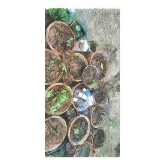 Pots in kitchen garden photo card