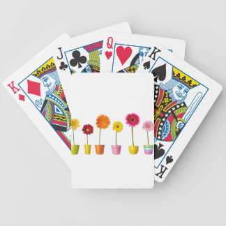 Potted flowers bicycle playing cards
