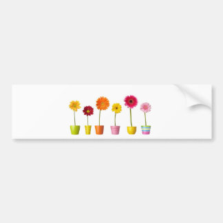 Potted flowers bumper stickers