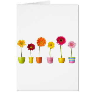Potted flowers card