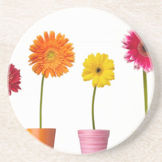 Potted flowers beverage coaster