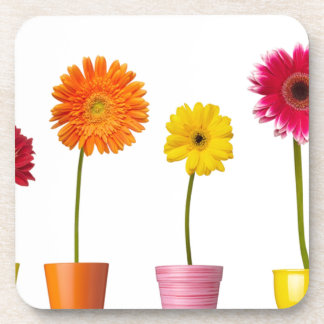 Potted flowers drink coaster