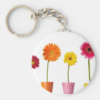 Potted flowers keychain