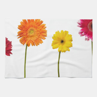 Potted flowers hand towels