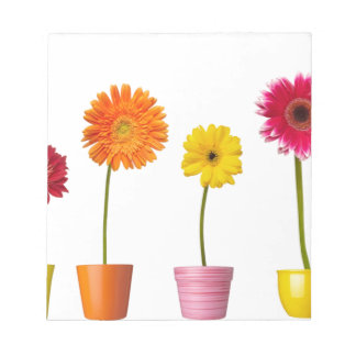 Potted flowers memo note pad