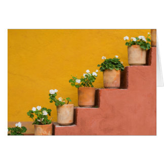 Potted flowers on staircase greeting card