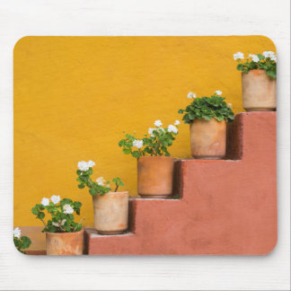 Potted flowers on staircase mouse pad