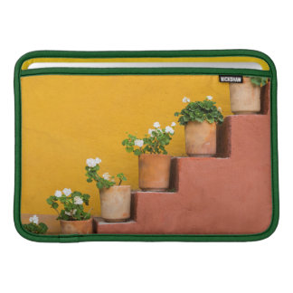 Potted flowers on staircase sleeve for MacBook air