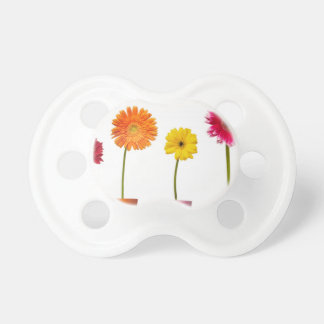 Potted flowers baby pacifier