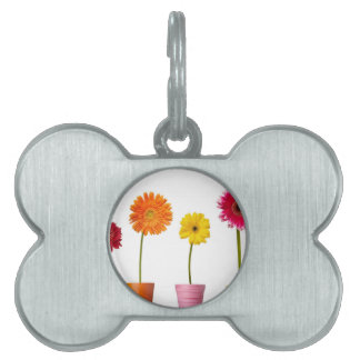 Potted flowers pet name tags