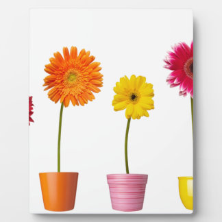 Potted flowers display plaque