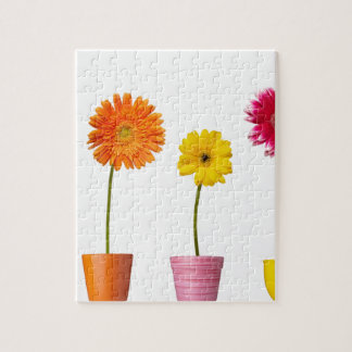 Potted flowers jigsaw puzzle