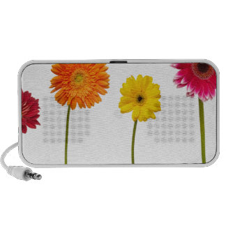 Potted flowers travelling speakers