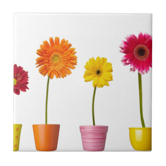 Potted flowers tile