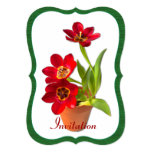 "Potted Mature Red Tulips Photograph Template: 5"" X 7"" Invitation Card"