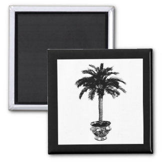 Potted Palm Tree - black and white Magnet