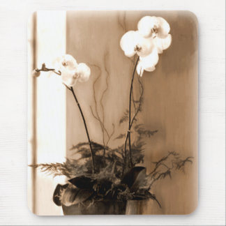 Potted Phalaenopsis Sepia Tone Mouse Pad