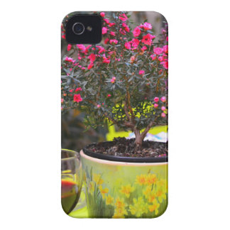 Potted pink Flowers and wine in Paris Case-Mate iPhone 4 Cases