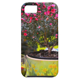 Potted pink Flowers and wine in Paris iPhone SE/5/5s Case