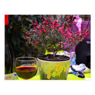Potted pink Flowers and wine in Paris Postcard