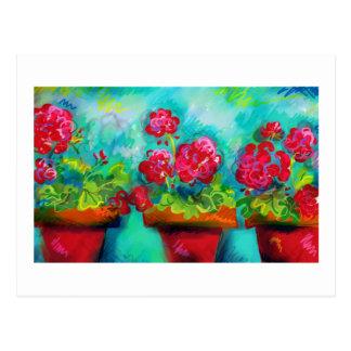 Potted Pink Geraniums Postcard