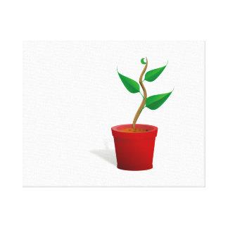 Potted Plant Canvas Prints