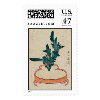 Potted Plant postage (large)