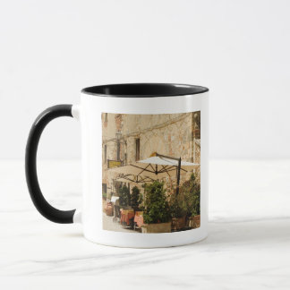 Potted plants and patio umbrellas in front of a mug