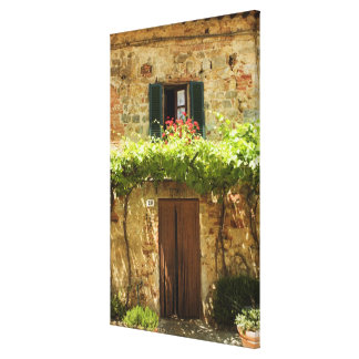 Potted plants in front of a building, Piazza Canvas Print