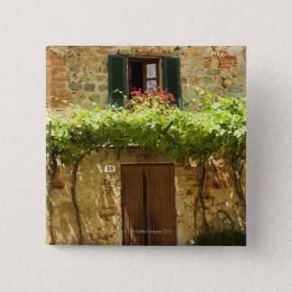 Potted plants in front of a building, Piazza Pinback Button