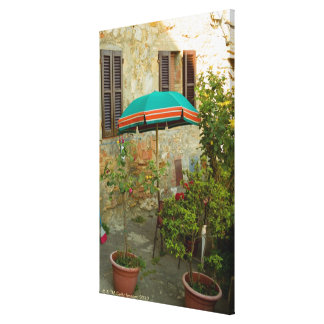 Potted plants in lawn, San Gimignano, Siena Canvas Print