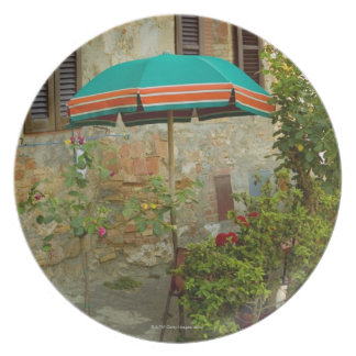 Potted plants in lawn, San Gimignano, Siena Melamine Plate