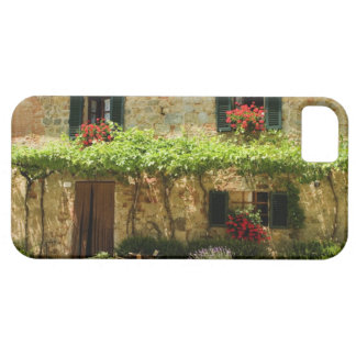 Potted plants outside a house, Piazza Roma, iPhone SE/5/5s Case