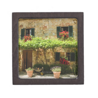 Potted plants outside a house, Piazza Roma, Jewelry Box