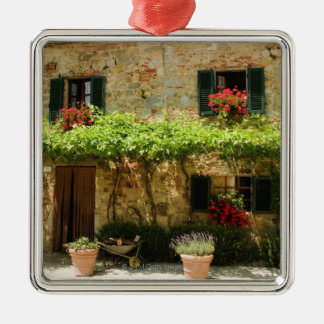 Potted plants outside a house Piazza Roma Ornaments